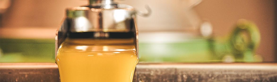 Comprar Aceite de Oliva Virgen Extra - Extra Virgin Oil